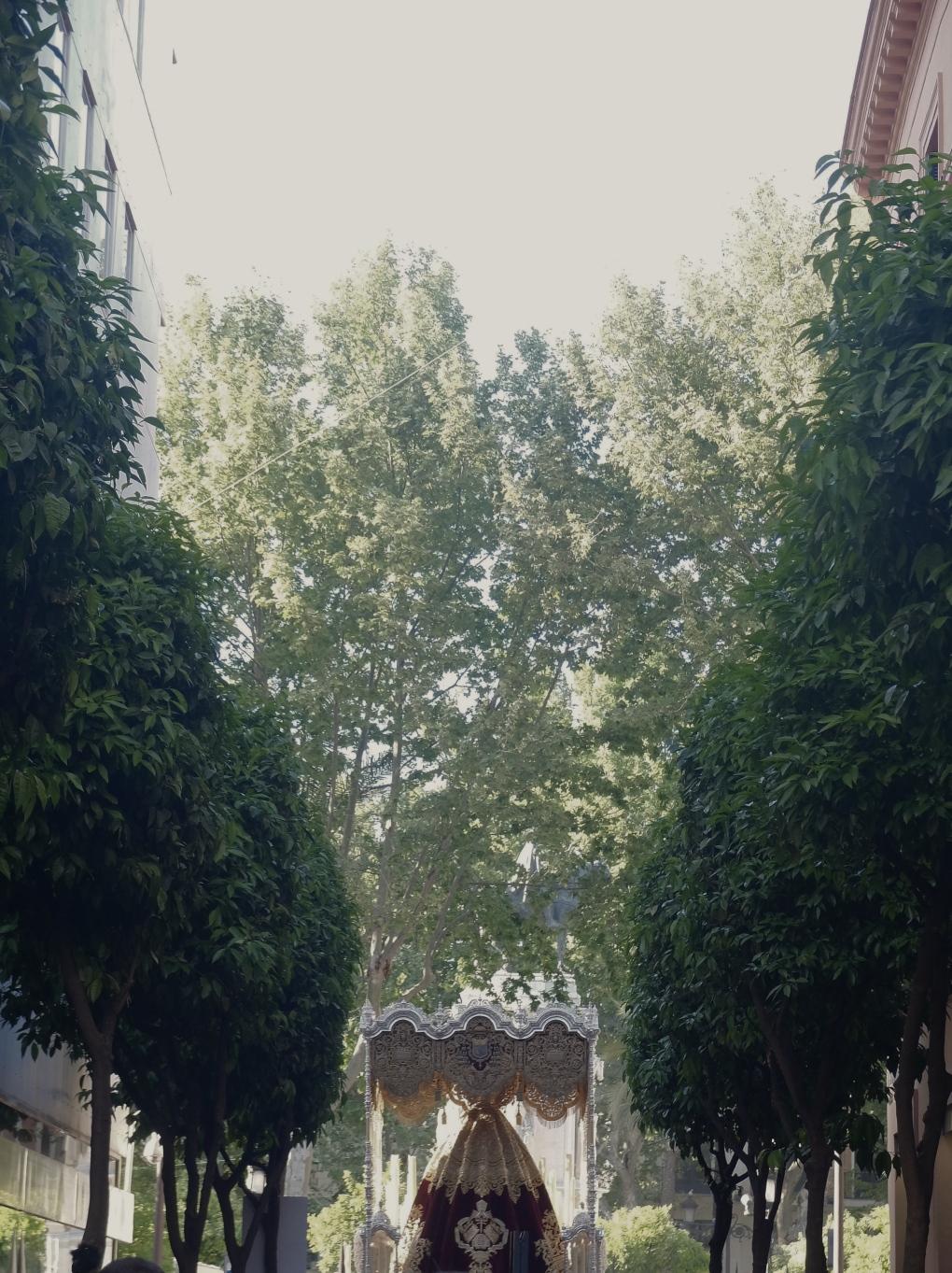 centinelas verdes