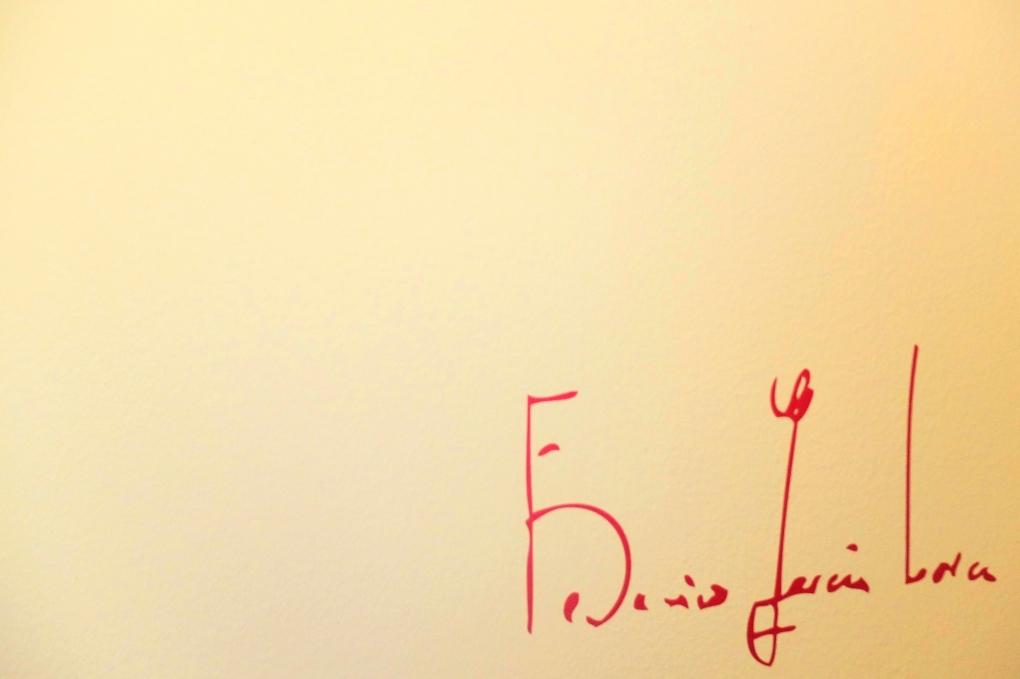 firma de Federico